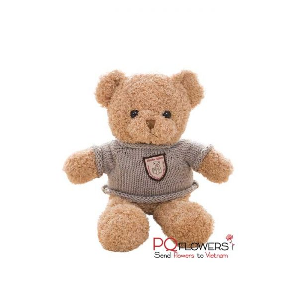 melody-teddy-bears-send-to-gifts-to-vietnam-180321