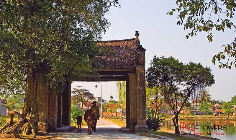 bac-giang-flower-shop-vietnam-250421